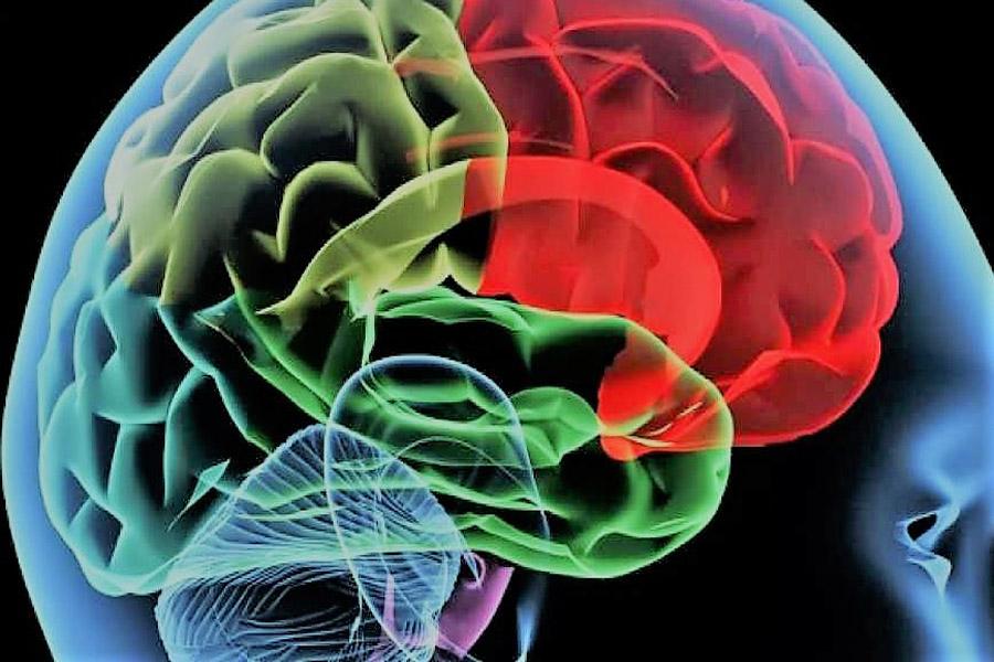 Vuoi guarire? Abbandona lo stato cerebrale di stress!